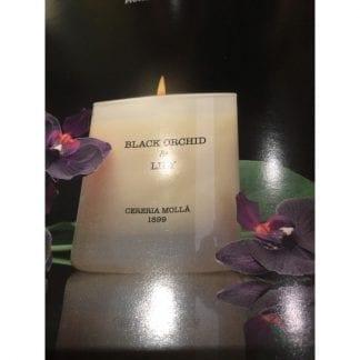 Vela-Black Orchid & Lily
